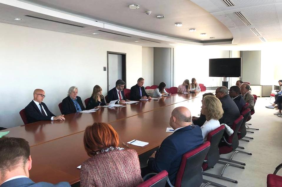 Mesa Redonda con eurodiputados y otros funcionarios del Parlamento Europeo